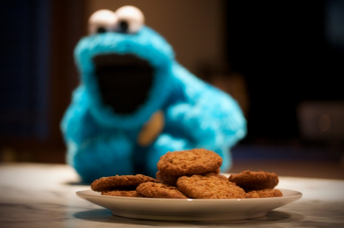 MichaelVerhoef_cookie_monster